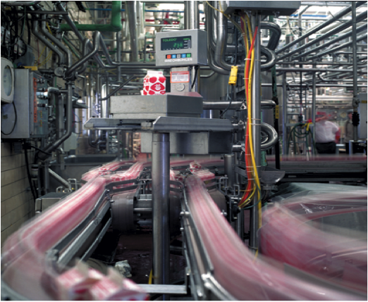 Food Packaging Automation